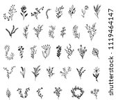 set of hand drawn floral... | Shutterstock .eps vector #1119464147