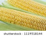 corncobs fill the whole frame... | Shutterstock . vector #1119518144