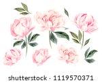 beautiful watercolor set with...   Shutterstock . vector #1119570371