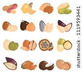 nuts and seeds color flat icons ... | Shutterstock .eps vector #1119593441