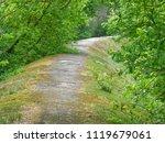 beautiful concrete road in the... | Shutterstock . vector #1119679061