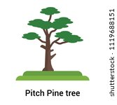 pitch pine tree icon vector... | Shutterstock .eps vector #1119688151