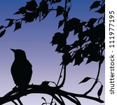 Bird Silhouette On Sunset