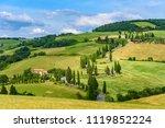 cypress tree scenic winding... | Shutterstock . vector #1119852224