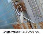 the closed seal is fixed to the ... | Shutterstock . vector #1119901721