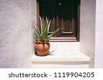 old entrance door with huge aloe | Shutterstock . vector #1119904205