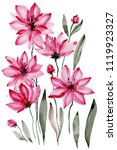 floral illustration. beautiful... | Shutterstock . vector #1119923327