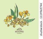 mustard  plant  mustard seeds ... | Shutterstock .eps vector #1119965744