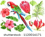 summer set of elmenents on... | Shutterstock . vector #1120016171