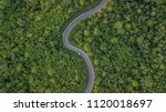 Aerial View Of Green Forest...