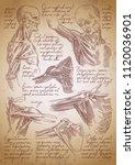 Leonardo Da Vinci Sketches....