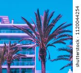 Pink Palm Trees  And Hotel...