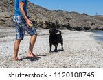 man with his dog on the beach. | Shutterstock . vector #1120108745