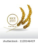 gold rice grand vector... | Shutterstock .eps vector #1120146419