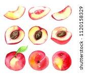 juicy ripe peaches . sliced... | Shutterstock . vector #1120158329