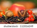 glowing autumn fruits - stock photo