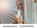 the closed seal is fixed to the ... | Shutterstock . vector #1120163501