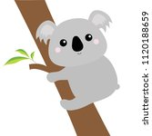 koala face head hanging on... | Shutterstock .eps vector #1120188659