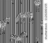 exotic animal zebra on the... | Shutterstock .eps vector #1120200155