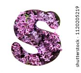the letter s of the english... | Shutterstock . vector #1120205219
