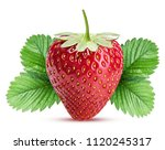 strawberry with leaf isolated... | Shutterstock . vector #1120245317