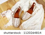woman shoes with accessories | Shutterstock . vector #1120264814