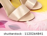 woman shoes with accessories | Shutterstock . vector #1120264841