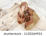 woman shoes with accessories | Shutterstock . vector #1120264931