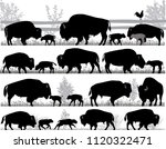 Silhouettes Of American Bison ...