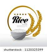 elegant master gold rice vector | Shutterstock .eps vector #1120325399