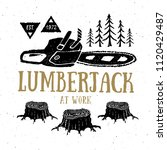 lumberjack at work with... | Shutterstock . vector #1120429487
