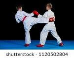 the studio shot of group of... | Shutterstock . vector #1120502804