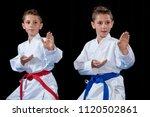 two boys training karate kata... | Shutterstock . vector #1120502861