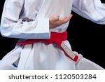 aikido red belt on white kimono ...   Shutterstock . vector #1120503284