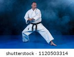 white karate fighter isolated... | Shutterstock . vector #1120503314