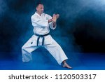 white karate fighter isolated... | Shutterstock . vector #1120503317