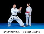 male karate instructor training ... | Shutterstock . vector #1120503341