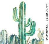 Watercolor Cactus Art. Hand...