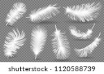 realistic fluffy feathers.... | Shutterstock .eps vector #1120588739