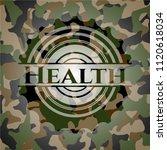 health on camo texture | Shutterstock .eps vector #1120618034