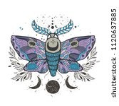 sketch graphic illustration... | Shutterstock .eps vector #1120637885