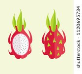 pitaya dragon fruit tropical... | Shutterstock .eps vector #1120695734