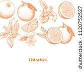 vector frame with oranges and... | Shutterstock .eps vector #1120752527