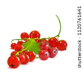 fresh  nutritious and tasty red ... | Shutterstock .eps vector #1120761641