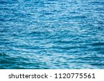 unnatural vibrant blue color of ... | Shutterstock . vector #1120775561