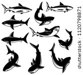 set of shark illustrations.... | Shutterstock .eps vector #1120798871