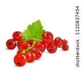 fresh  nutritious and tasty red ... | Shutterstock .eps vector #1120837454