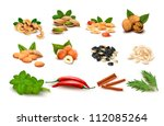 big set of ripe nuts and seeds...   Shutterstock .eps vector #112085264