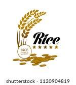 elegant master gold rice great... | Shutterstock .eps vector #1120904819