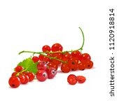 fresh  nutritious and tasty red ... | Shutterstock .eps vector #1120918814
